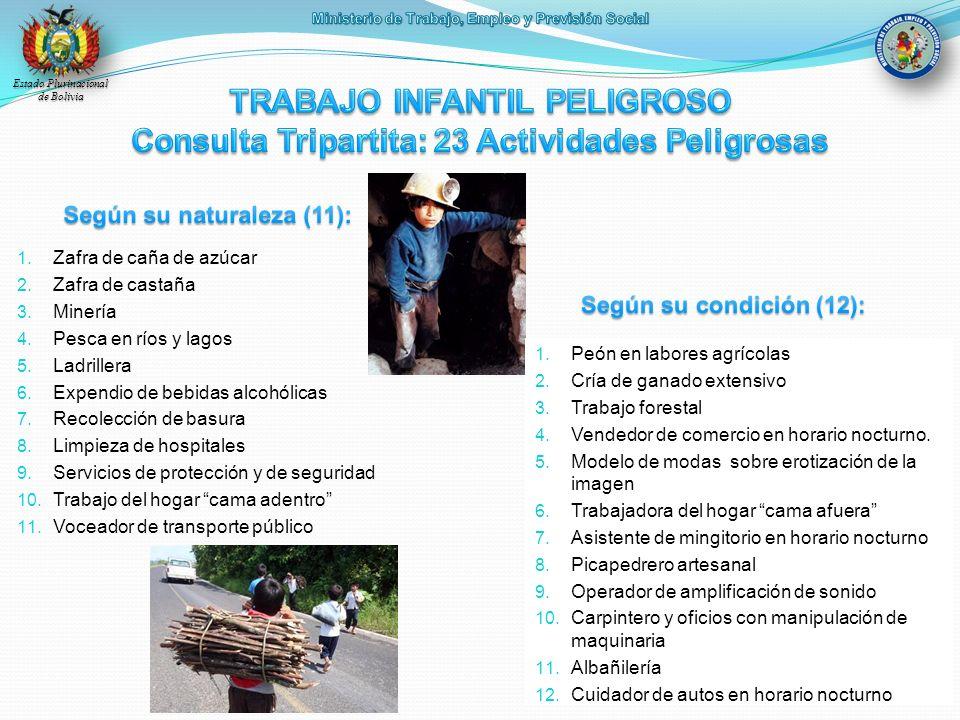 Estado Plurinacional de Bolivia 1. Zafra de caña de azúcar 2. Zafra de castaña 3. Minería 4. Pesca en ríos y lagos 5. Ladrillera 6. Expendio de bebida