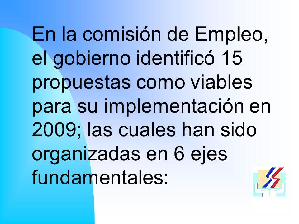 En la comisión de Empleo, el gobierno identificó 15 propuestas como viables para su implementación en 2009; las cuales han sido organizadas en 6 ejes fundamentales: