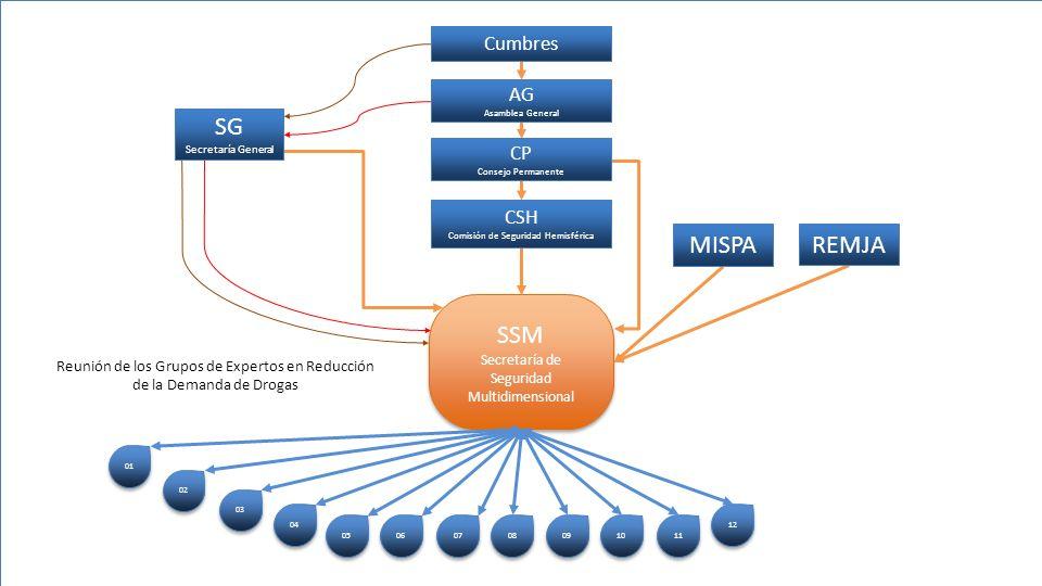 SSM Secretaría de Seguridad Multidimensional 01 02 03 04 05 06 07 08 09 10 11 12 CSH Comisión de Seguridad Hemisférica CP Consejo Permanente AG Asambl