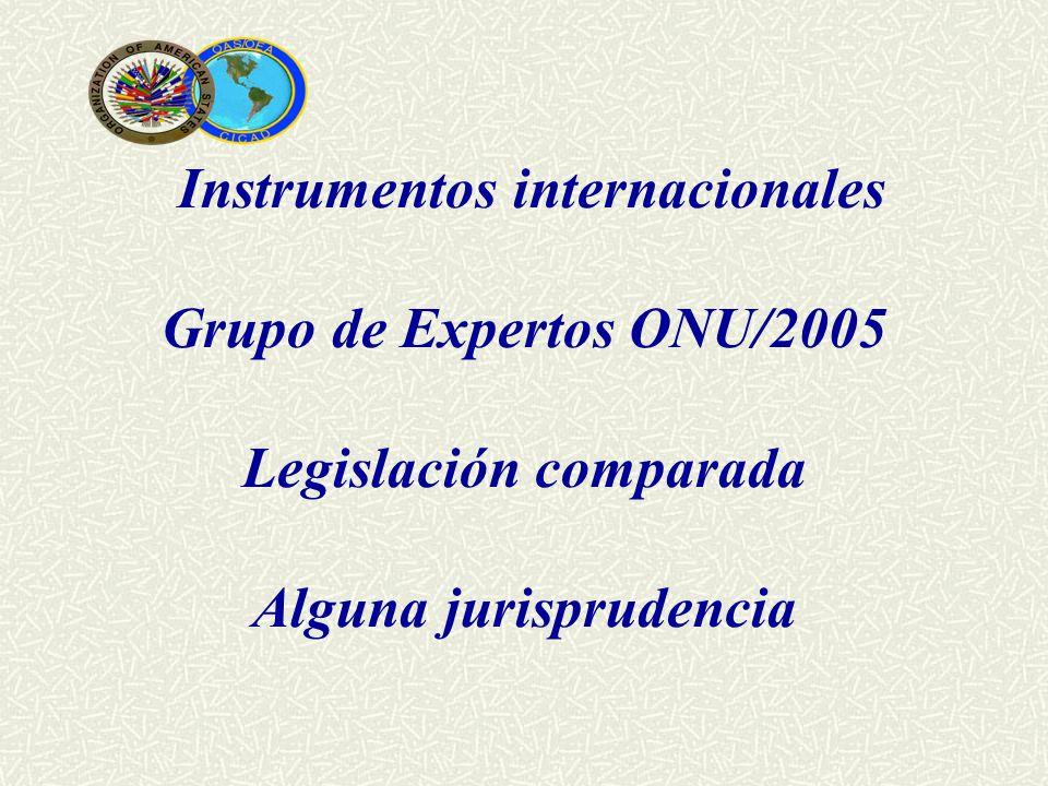 Instrumentos internacionales Grupo de Expertos ONU/2005 Legislación comparada Alguna jurisprudencia