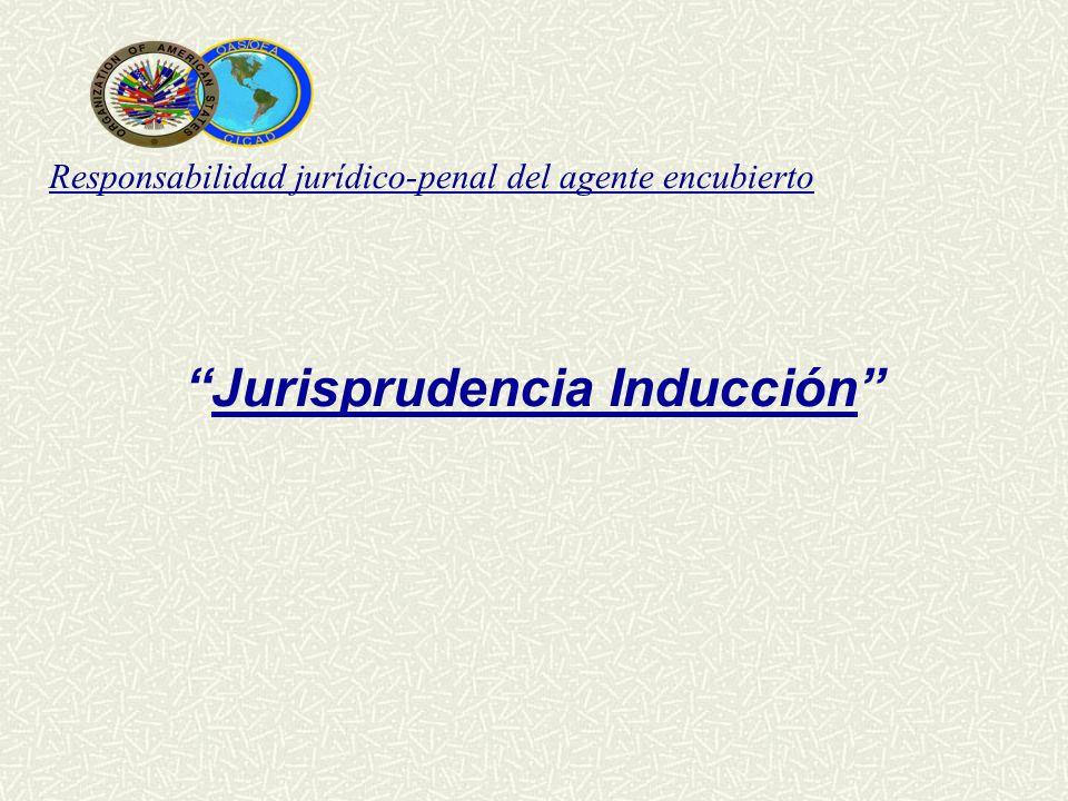 Responsabilidad jurídico-penal del agente encubierto Jurisprudencia Inducción