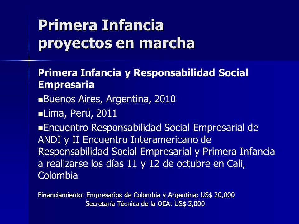 Primera Infancia y Responsabilidad Social Empresaria Buenos Aires, Argentina, 2010 Lima, Perú, 2011 Encuentro Responsabilidad Social Empresarial de AN