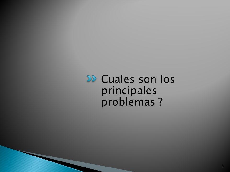 Cuales son los principales problemas 8