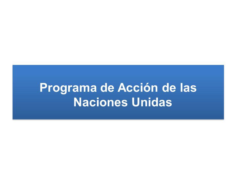Programa de Acción de las Naciones Unidas