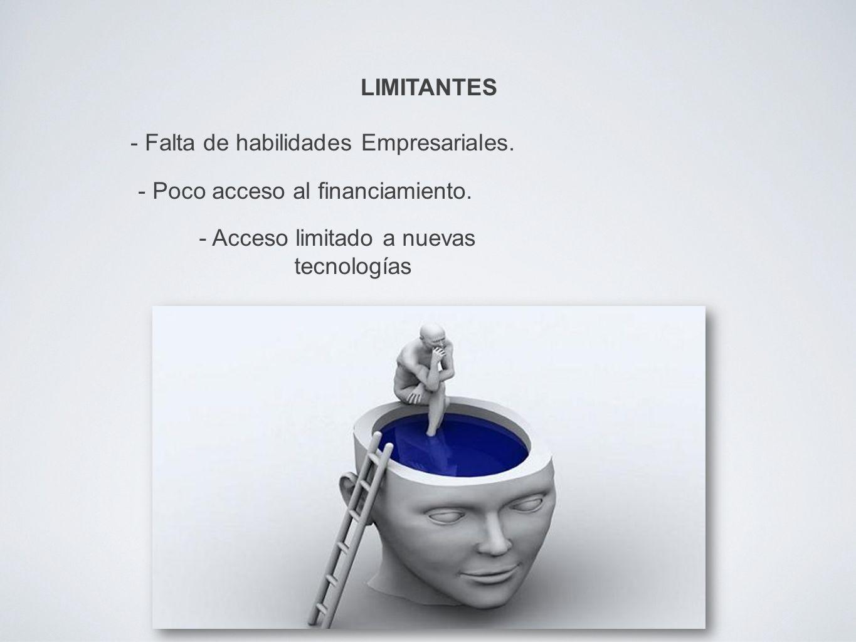 LIMITANTES - Falta de habilidades Empresariales. - Poco acceso al financiamiento.