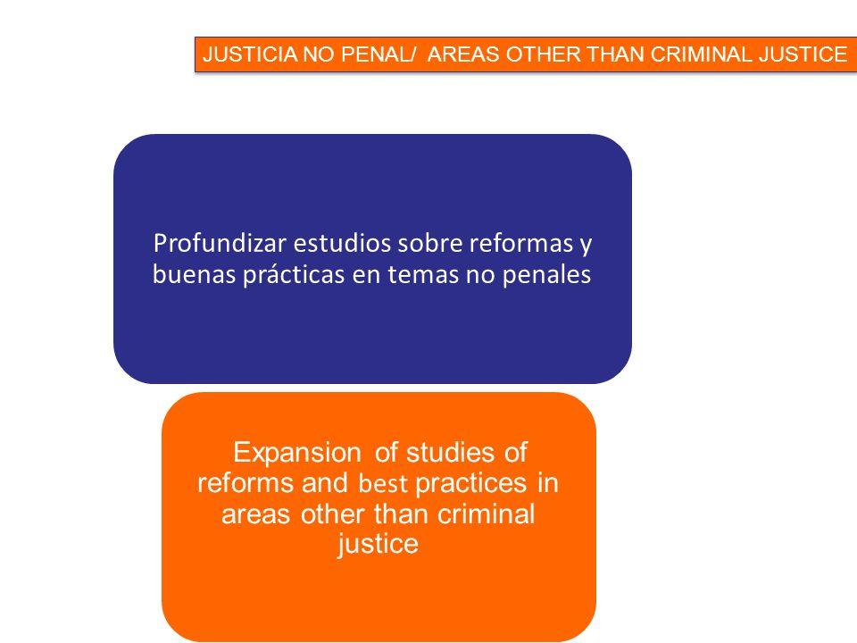 Profundizar estudios sobre reformas y buenas prácticas en temas no penales Expansion of studies of reforms and best practices in areas other than criminal justice JUSTICIA NO PENAL/ AREAS OTHER THAN CRIMINAL JUSTICE