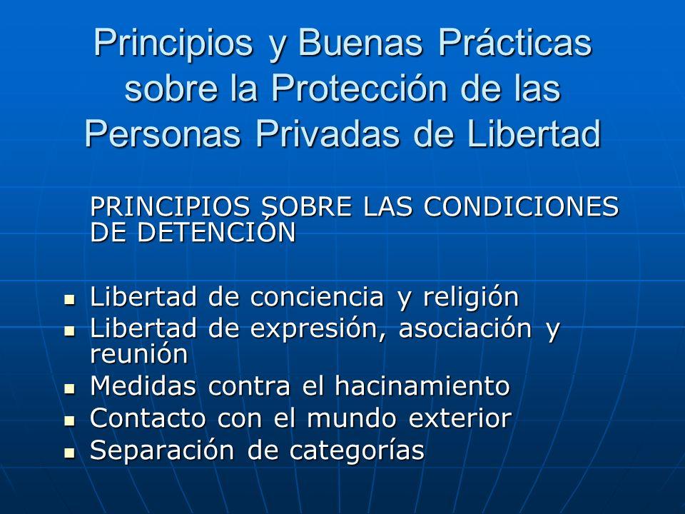 Principios y Buenas Prácticas sobre la Protección de las Personas Privadas de Libertad PRINCIPIOS RELATIVOS A LOS SISTEMAS DE PRIVACIÓN DE LIBERTAD Personal Registros corporales, inspección de instalaciones Régimen disciplinario Medidas para combatir la violencia y las situaciones de emergencia Inspecciones institucionales
