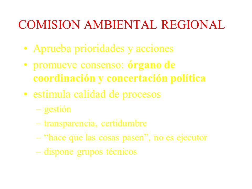 Madre de Dios Agosto 98 Cusco Mayo 98 Junín y Pasco Enero 99 Comisiones Regionales Ambientales C ronograma de Instalación Moquegua Agosto 98 Chimbote