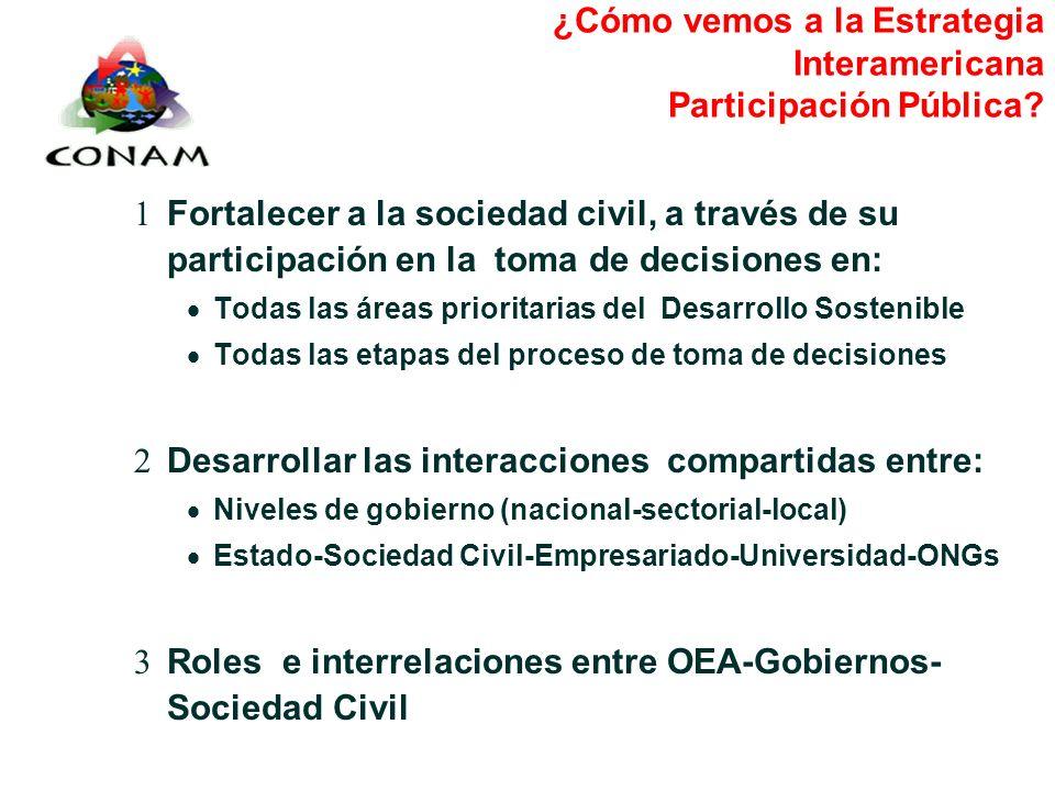 ¿Cómo vemos a la Estrategia Interamericana Participación Pública.