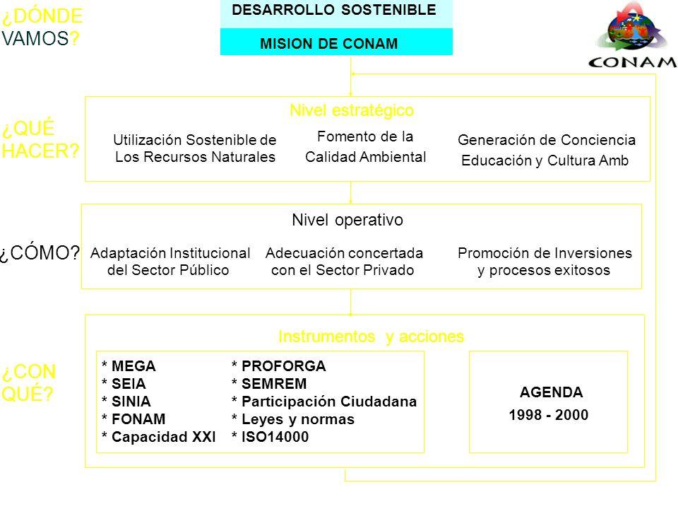 Adaptación InstitucionalAdecuación concertadaPromoción de Inversiones del Sector Públicoy procesos exitososcon el Sector Privado Nivel operativo ¿CÓMO.