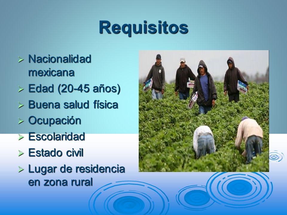 Requisitos Nacionalidad mexicana Nacionalidad mexicana Edad (20-45 años) Edad (20-45 años) Buena salud física Buena salud física Ocupación Ocupación E