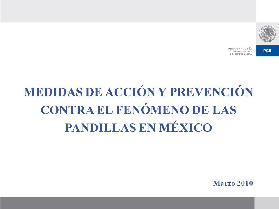 MEDIDAS DE ACCIÓN Y PREVENCIÓN CONTRA EL FENÓMENO DE LAS PANDILLAS EN MÉXICO Marzo 2010