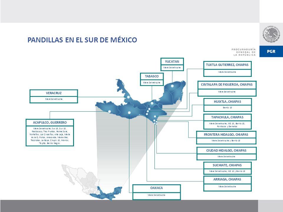 PANDILLAS EN EL SUR DE MÉXICO