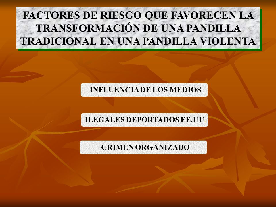 Testimonios de Pandilleros y Mareros recluidos en los centros penales
