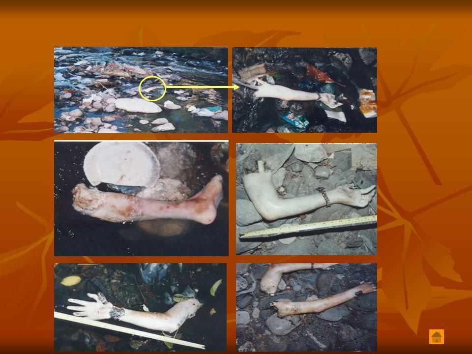 FACTORES DE RIESGO QUE FAVORECEN LA TRANSFORMACIÓN DE UNA PANDILLA TRADICIONAL EN UNA PANDILLA VIOLENTA INFLUENCIA DE LOS MEDIOSILEGALES DEPORTADOS EE.UU.CRIMEN ORGANIZADO