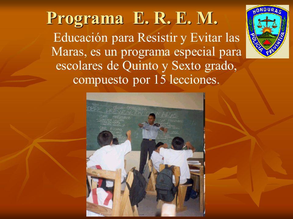 Programa E.R. E. M.
