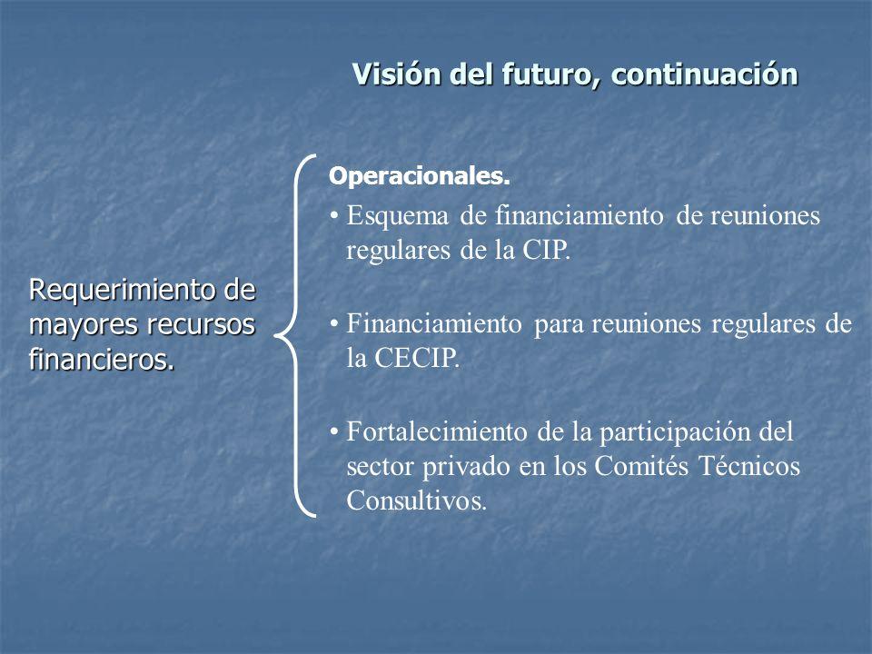 Visión del futuro, continuación Requerimiento de mayores recursos financieros.