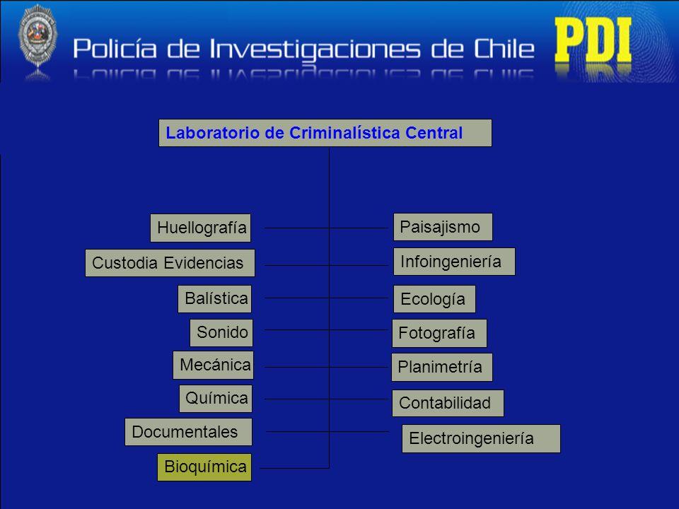 Laboratorio de Criminalística Central Huellografía Mecánica Custodia Evidencias Sonido Infoingeniería Electroingeniería Documentales Contabilidad Plan