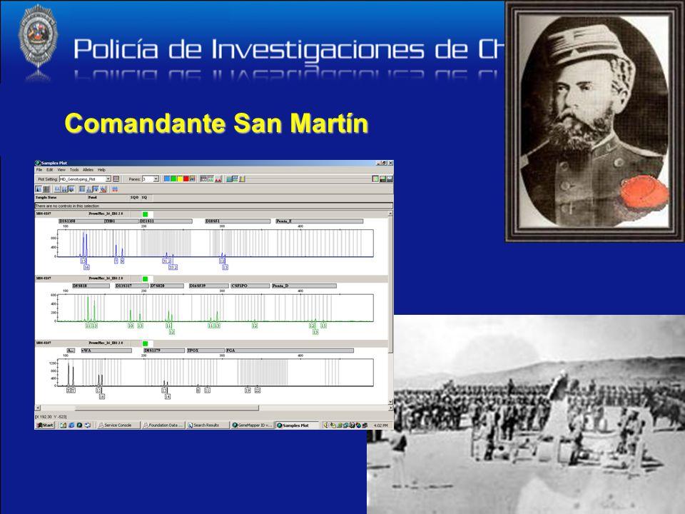 Comandante San Martín
