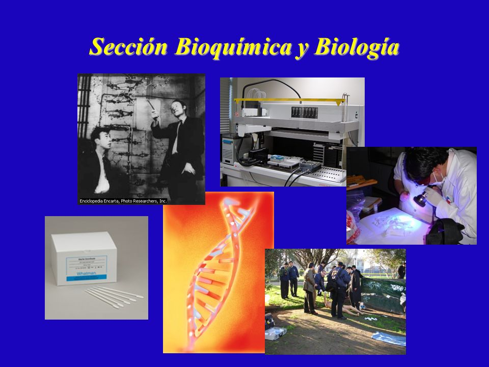 Sección Bioquímica y Biología