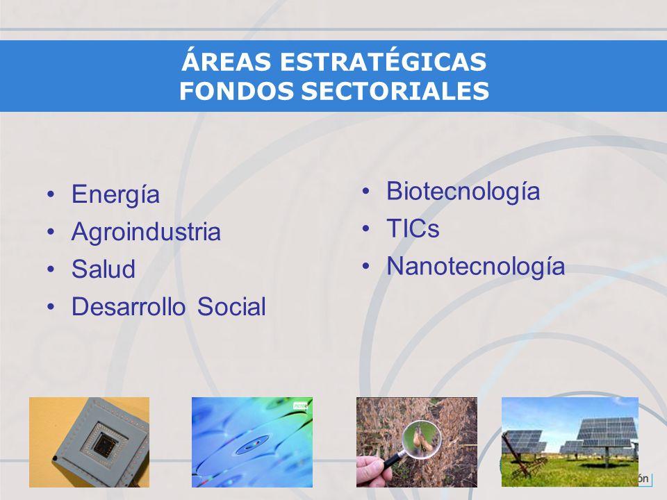 Energía Agroindustria Salud Desarrollo Social Biotecnología TICs Nanotecnología ÁREAS ESTRATÉGICAS FONDOS SECTORIALES