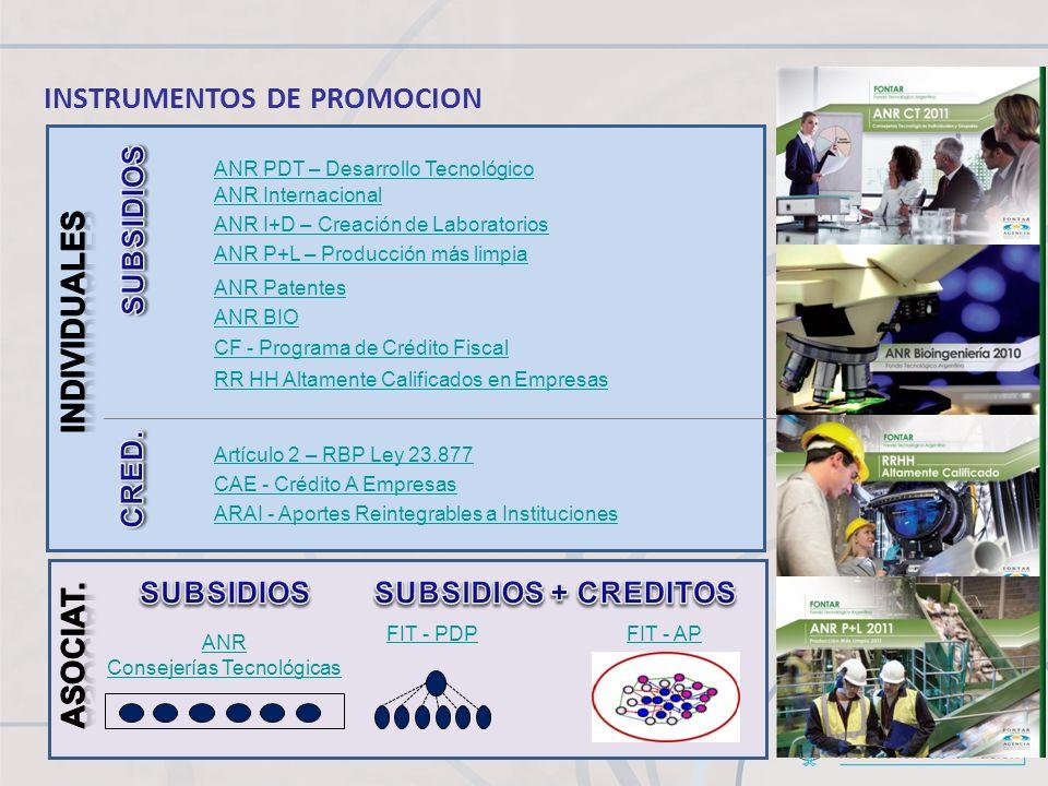 ANR PDT – Desarrollo Tecnológico ANR I+D – Creación de Laboratorios ANR P+L – Producción más limpia ANR Internacional ANR Patentes RR HH Altamente Cal