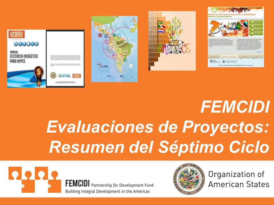 FEMCIDI Evaluaciones de Proyectos: Resumen del Séptimo Ciclo