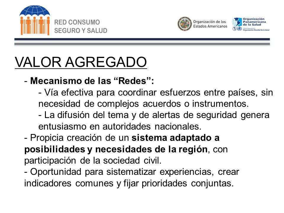 VALOR AGREGADO - Mecanismo de las Redes: - Vía efectiva para coordinar esfuerzos entre países, sin necesidad de complejos acuerdos o instrumentos.