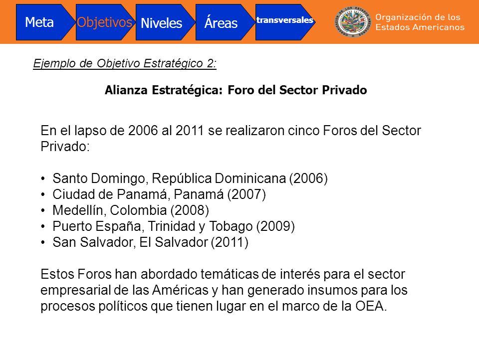En el lapso de 2006 al 2011 se realizaron cinco Foros del Sector Privado: Santo Domingo, República Dominicana (2006) Ciudad de Panamá, Panamá (2007) M
