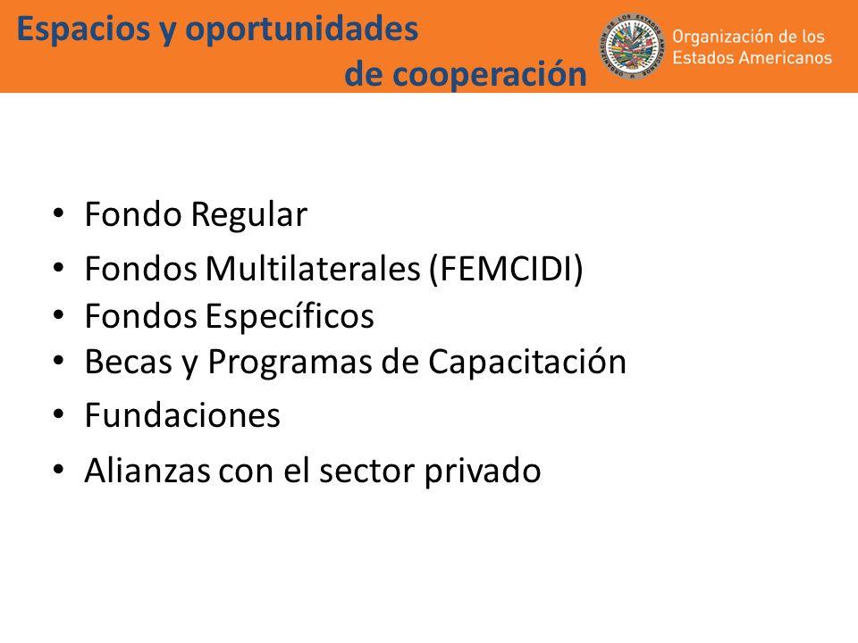 Espacios y oportunidades de cooperación Fondo Regular Fondos Multilaterales (FEMCIDI) Fondos Específicos Becas y Programas de Capacitación Fundaciones Alianzas con el sector privado