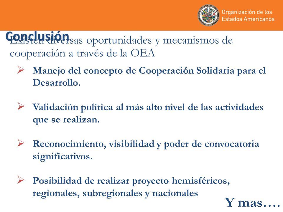 Conclusión Manejo del concepto de Cooperación Solidaria para el Desarrollo.