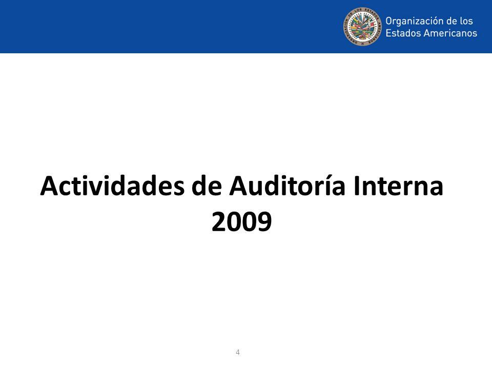 4 Actividades de Auditoría Interna 2009