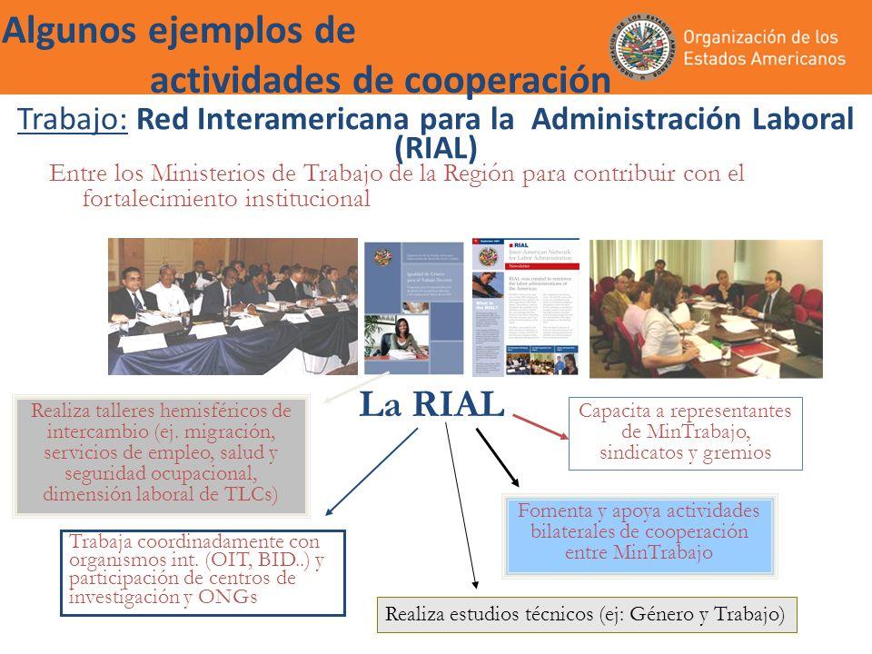 Trabajo: Red Interamericana para la Administración Laboral (RIAL) Entre los Ministerios de Trabajo de la Región para contribuir con el fortalecimiento