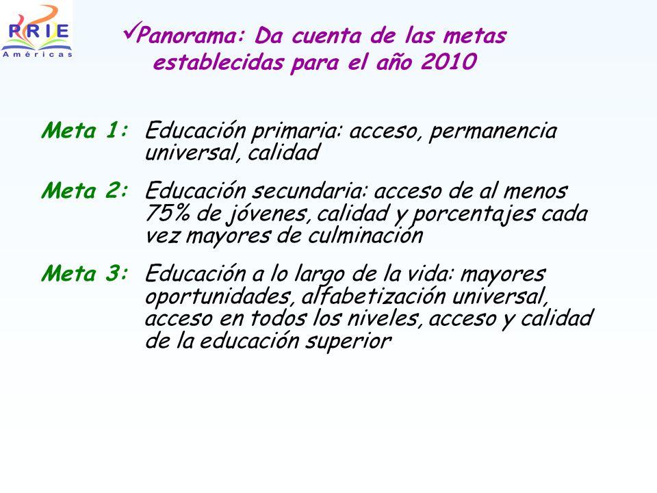 Panorama: Da cuenta de las metas establecidas para el año 2010 Meta 1:Educación primaria: acceso, permanencia universal, calidad Meta 2:Educación secu