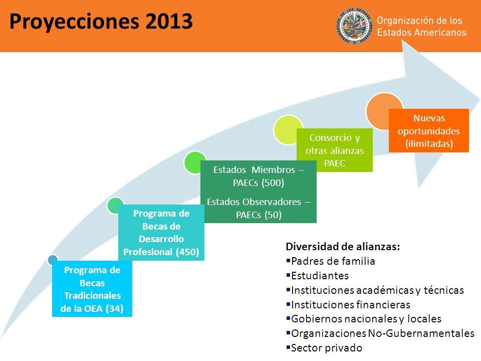Proyecciones 2013 Consorcio y otras alianzas PAEC Nuevas oportunidades (ilimitadas) Programa de Becas Tradicionales de la OEA (34) Programa Becas de D