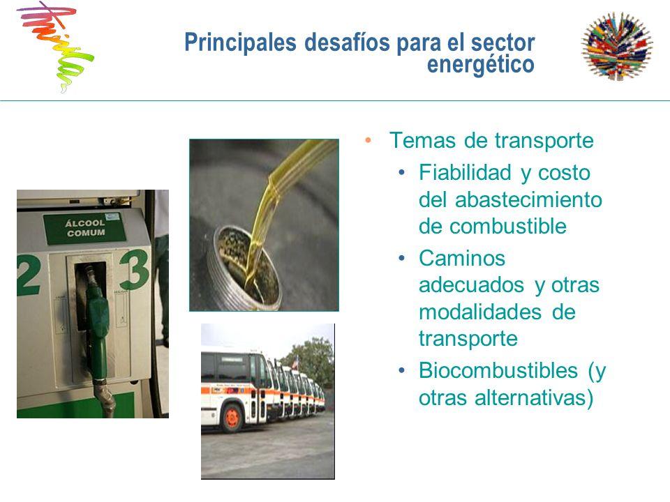 Principales desafíos para el sector energético Temas de transporte Fiabilidad y costo del abastecimiento de combustible Caminos adecuados y otras moda