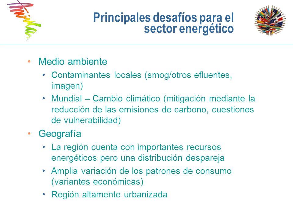 Principales desafíos para el sector energético Medio ambiente Contaminantes locales (smog/otros efluentes, imagen) Mundial – Cambio climático (mitigac