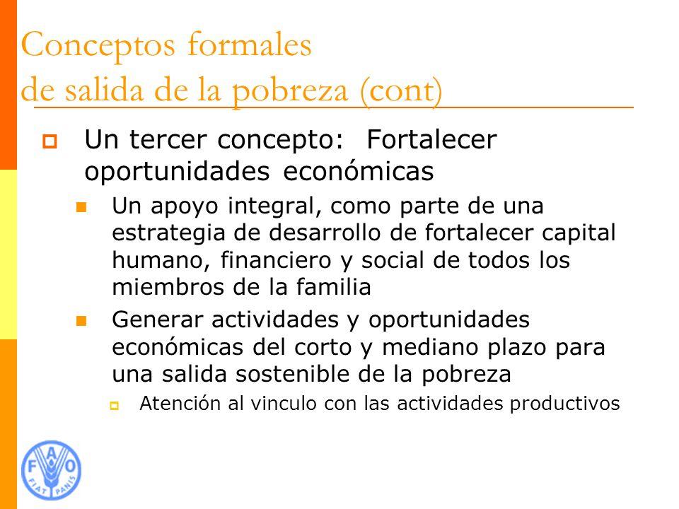 Ejemplos Chile Solidario Programa Puente Tekoporã Guías Familiares Bono de Desarrollo Humano Crédito de Desarrollo Humano Red Solidaria Red de Sostenibilidad a las Familias