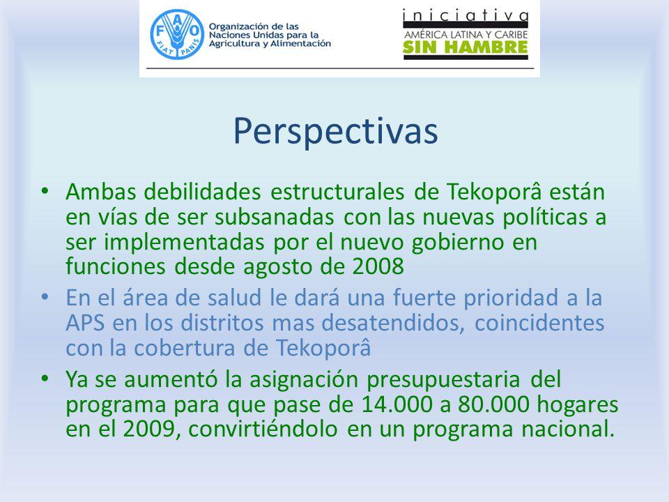 Perspectivas Ambas debilidades estructurales de Tekoporâ están en vías de ser subsanadas con las nuevas políticas a ser implementadas por el nuevo gob