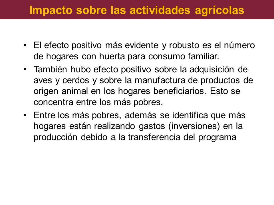 Impacto sobre las actividades agrícolas El efecto positivo más evidente y robusto es el número de hogares con huerta para consumo familiar. También hu