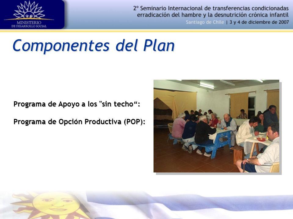 Componentes del Plan Programa de Apoyo a los sin techo: Programa de Opción Productiva (POP):