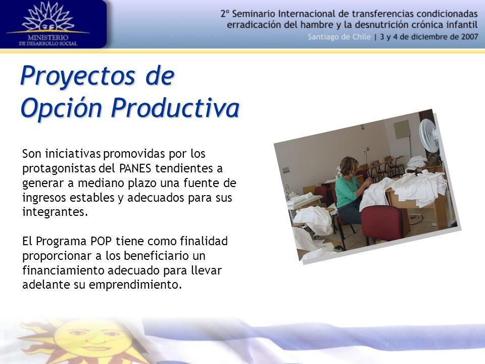 Proyectos de Opción Productiva Son iniciativas promovidas por los protagonistas del PANES tendientes a generar a mediano plazo una fuente de ingresos estables y adecuados para sus integrantes.