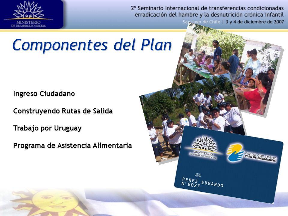 Componentes del Plan Ingreso Ciudadano Construyendo Rutas de Salida Trabajo por Uruguay Programa de Asistencia Alimentaria