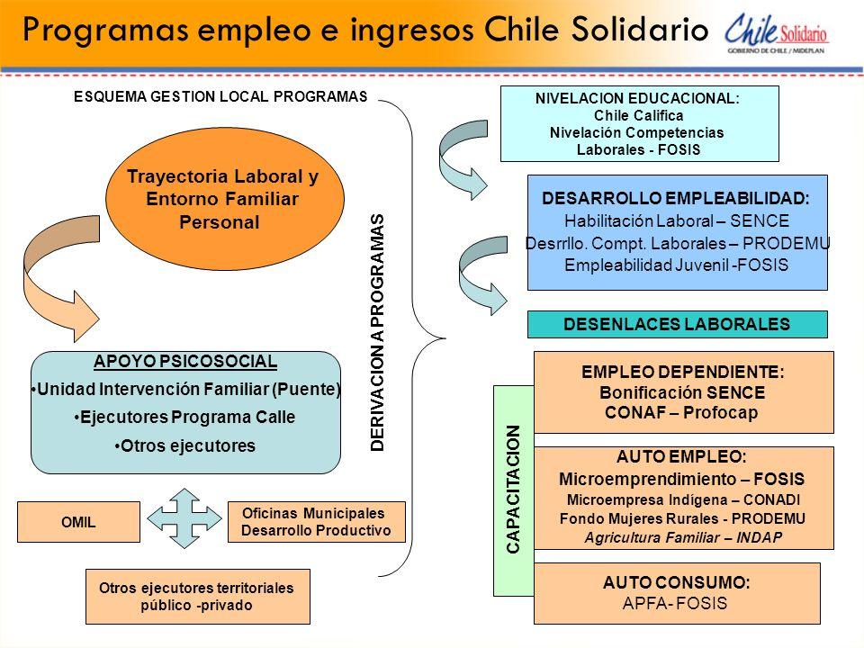 Programas empleo e ingresos Chile Solidario APOYO PSICOSOCIAL Unidad Intervención Familiar (Puente) Ejecutores Programa Calle Otros ejecutores Trayect