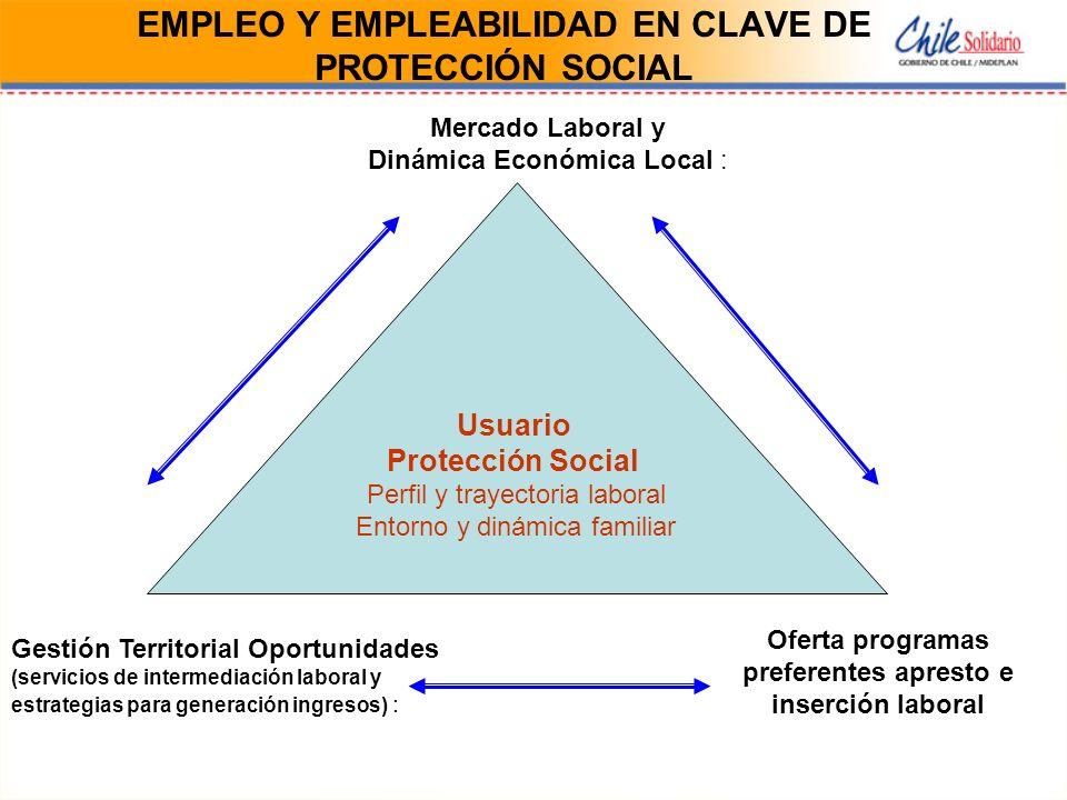 EMPLEO Y EMPLEABILIDAD EN CLAVE DE PROTECCIÓN SOCIAL Usuario Protección Social Perfil y trayectoria laboral Entorno y dinámica familiar Mercado Labora