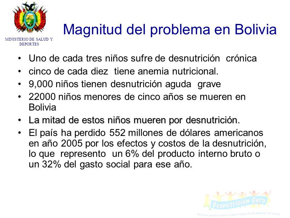 Magnitud del problema en Bolivia Uno de cada tres niños sufre de desnutrición crónica cinco de cada diez tiene anemia nutricional. 9,000 niños tienen