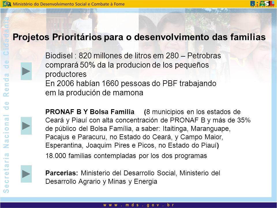 Projetos Prioritários para o desenvolvimento das familias Biodisel : 820 millones de litros em 280 – Petrobras comprará 50% da la producion de los pequeños productores En 2006 habían 1660 pessoas do PBF trabajando em la produción de mamona PRONAF B Y Bolsa Familia (8 municipios en los estados de Ceará y Piauí con alta concentración de PRONAF B y más de 35% de público del Bolsa Família, a saber: Itaitinga, Maranguape, Pacajus e Paracuru, no Estado do Ceará, y Campo Maior, Esperantina, Joaquim Pires e Picos, no Estado do Piauí) 18.000 familias contempladas por los dos programas Parcerias: Ministerio del Desarrollo Social, Ministerio del Desarrollo Agrario y Minas y Energia