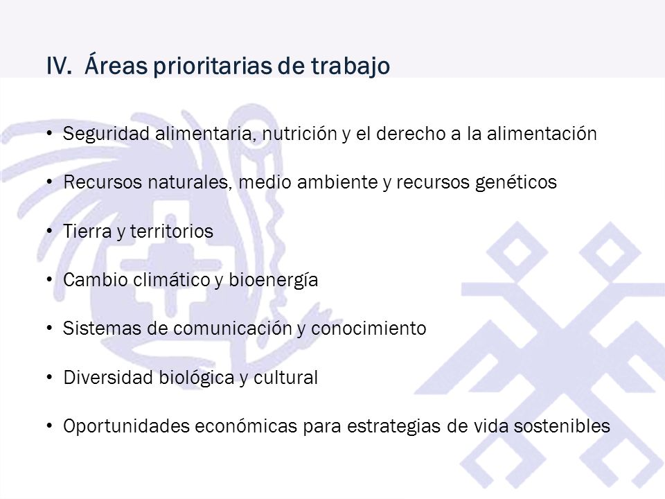 IV. Áreas prioritarias de trabajo Seguridad alimentaria, nutrición y el derecho a la alimentación Recursos naturales, medio ambiente y recursos genéti