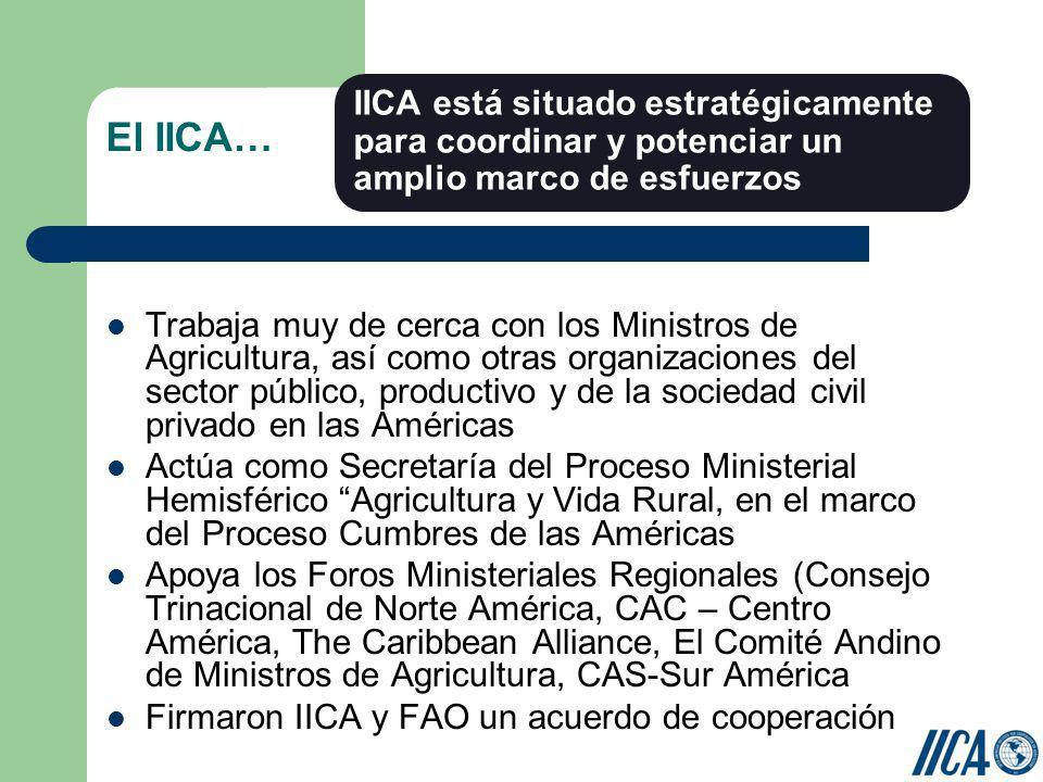 El IICA… Trabaja muy de cerca con los Ministros de Agricultura, así como otras organizaciones del sector público, productivo y de la sociedad civil pr