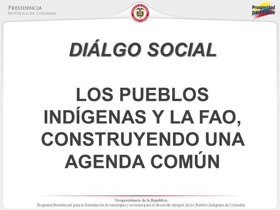 Vicepresidencia de la República Programa Presidencial para la formulación de estrategias y acciones para el desarrollo integral de los Pueblos Indígenas de Colombia DIÁLGO SOCIAL LOS PUEBLOS INDÍGENAS Y LA FAO, CONSTRUYENDO UNA AGENDA COMÚN